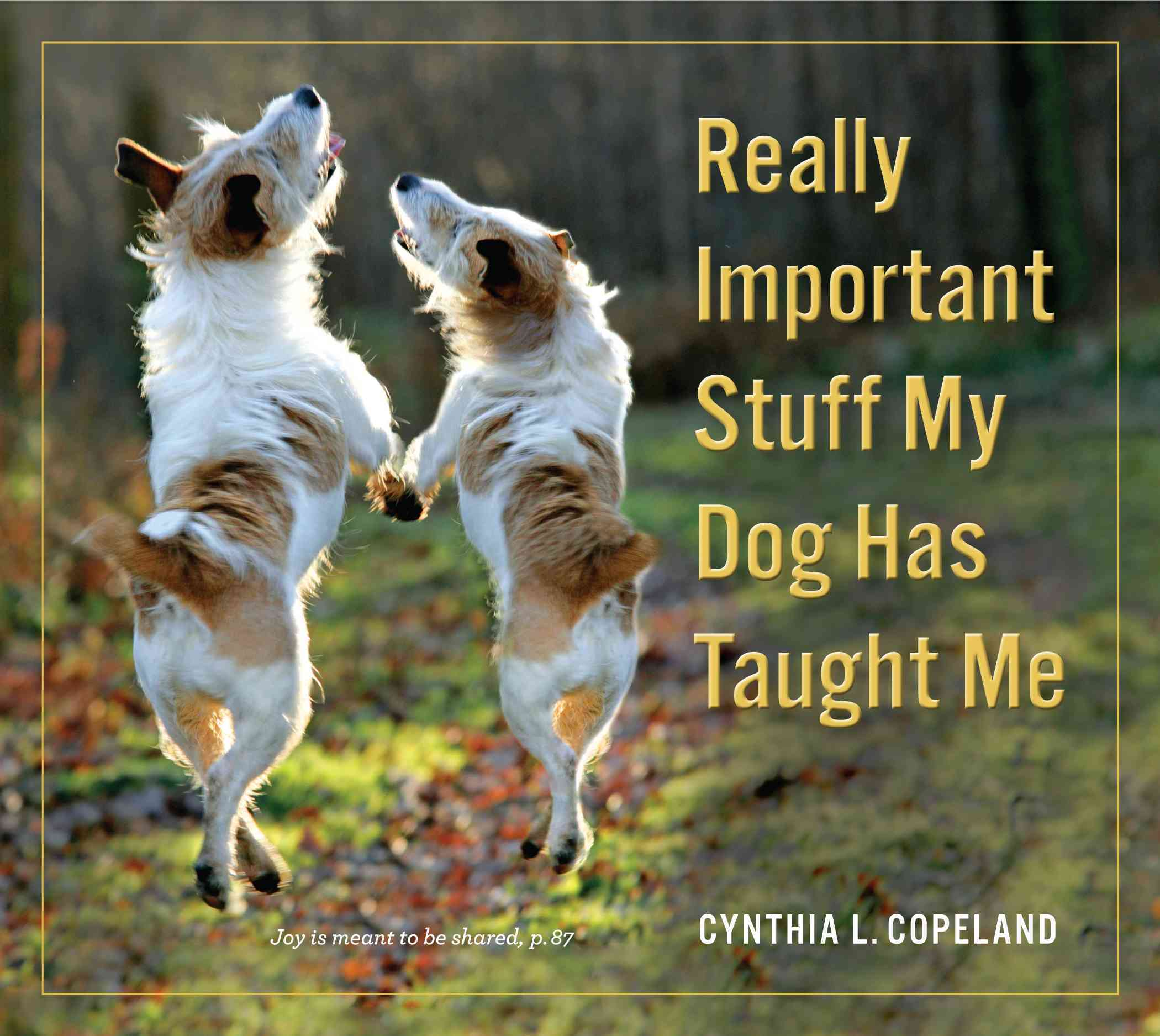 Really Important Stuff My Dog Has Taught Me By Copeland, Cynthia L. (COR)